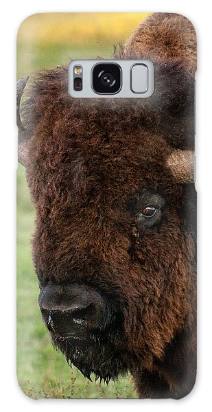 Buffalo Portrait Galaxy Case