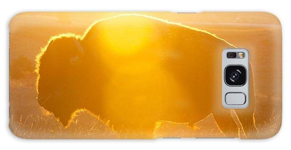 Buffalo Sunrise Galaxy Case