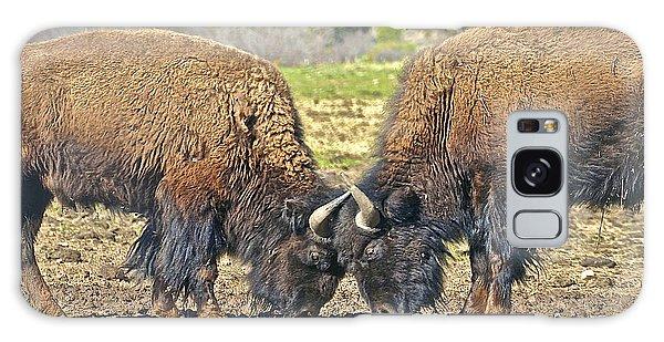 Buffaloes At Play Galaxy Case