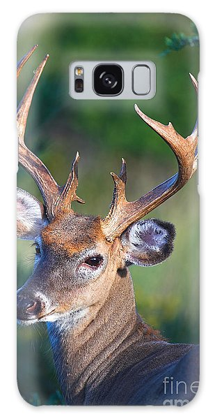 Buck Posing Galaxy Case by Jane Axman