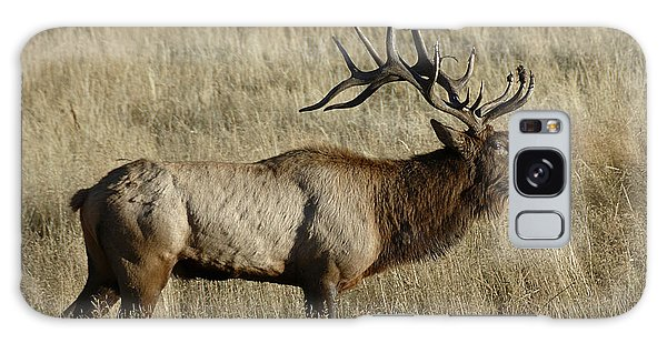 Bull Elk Bugling Galaxy Case