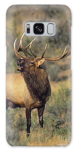Bull Elk In Rut Bugling Yellowstone Wyoming Wildlife Galaxy Case