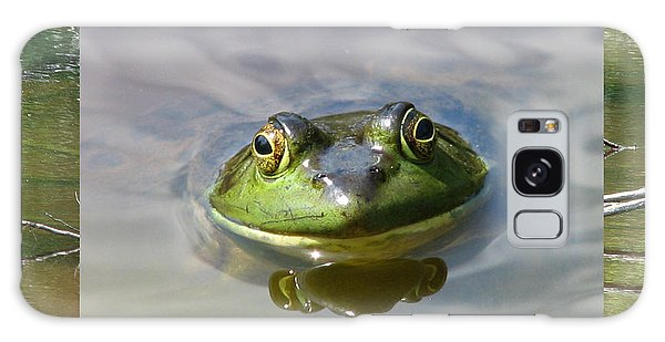 Bull Frog And Pond Galaxy Case