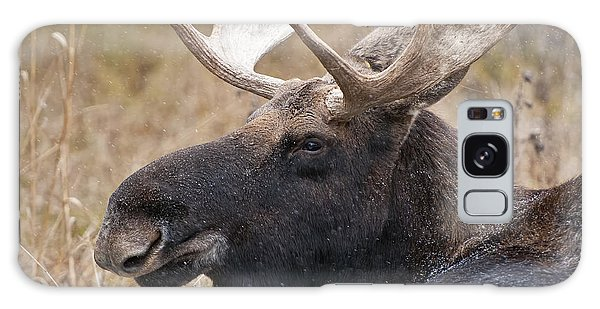 Bull Moose Galaxy Case