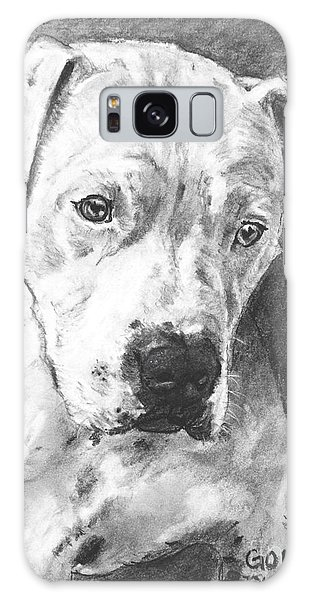 Bull Terrier Sketch In Charcoal  Galaxy Case by Kate Sumners