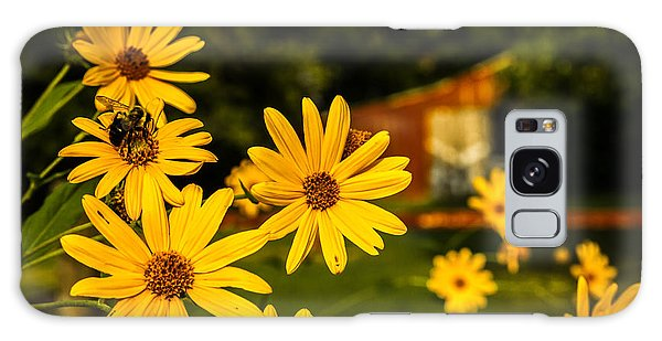 Bumble Bee On A Western Sunflower Galaxy Case