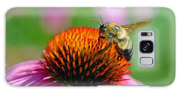 Bumblebee On A Coneflower Galaxy Case by Rodney Campbell