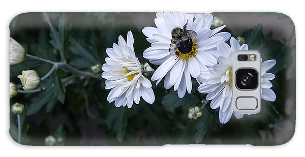 Bumblebee On Daisy Galaxy Case