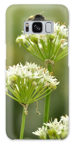 Bumblebee On Garlic Chives Galaxy Case by Rebecca Sherman
