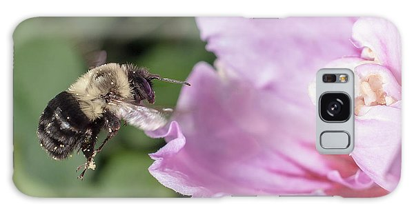 bumblebee to Rose of Sharon Galaxy Case