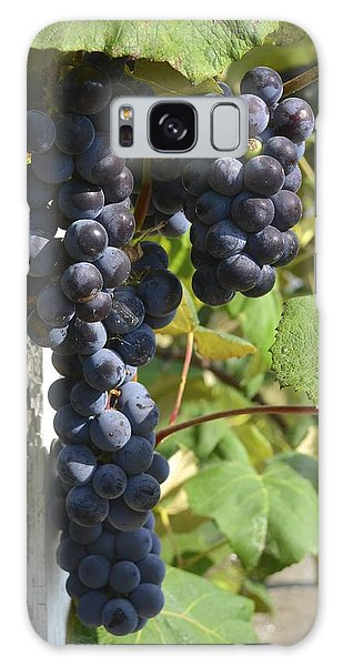 Bunches Of Grapes Galaxy Case