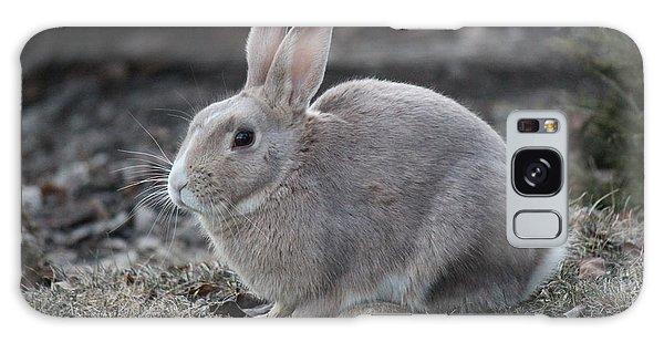 Bunny Galaxy Case