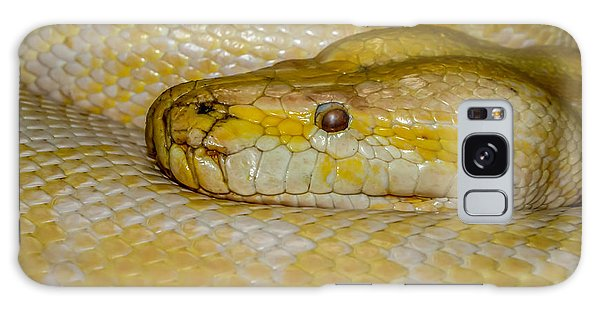 Burmese Python Galaxy Case by Ernie Echols