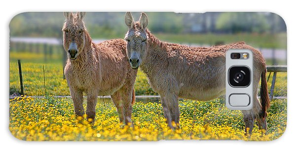 Burros In The Buttercups Galaxy Case by Suzanne Stout
