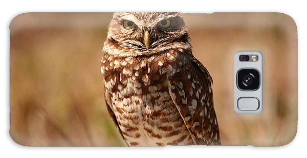 Burrowing Owl Impressions Galaxy Case