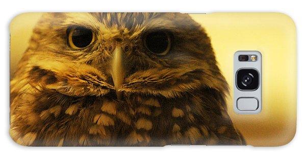 Burrowing Owl Galaxy Case by Olivia Hardwicke