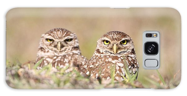 Burrowing Owl Pair Galaxy Case