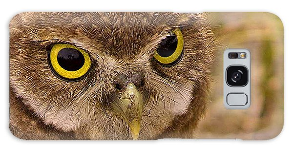 Burrowing Owl Portrait Galaxy Case by Anne Rodkin