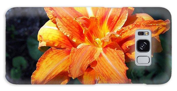Burst Of Orange In The Garden Galaxy Case by Deborah Fay