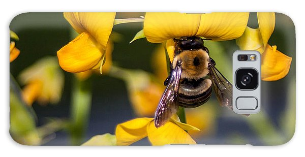 Busy Bee 3 Galaxy Case