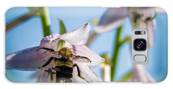 Busy Bee Galaxy Case by Brian Caldwell
