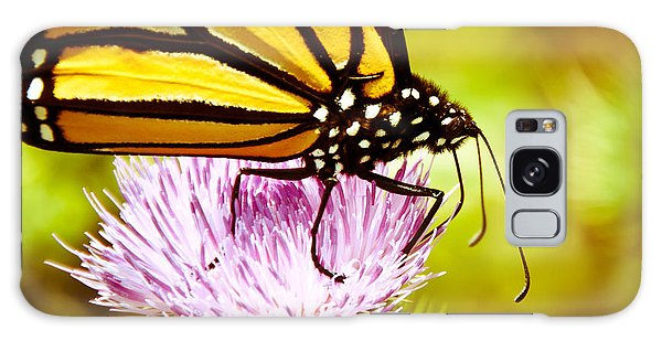 Busy Butterfly Galaxy Case by Cheryl Baxter