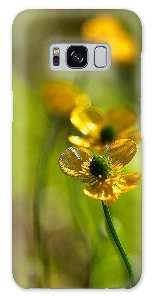 Buttercups I Galaxy Case by Tracy Male
