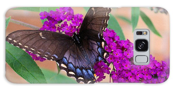 Butterfly And Friend Galaxy Case