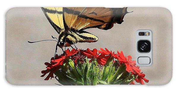 Butterfly And Maltese Cross 1 Galaxy Case by Aaron Aldrich