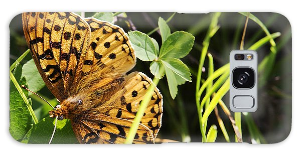 Butterfly At Signal Mountain Galaxy Case by Belinda Greb