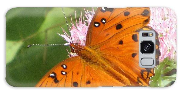 Butterfly Butterfly 2  Galaxy Case