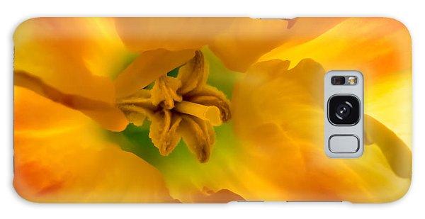 Butterfly Daffodil Springtime Galaxy Case