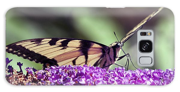 Butterfly Feeding Galaxy Case