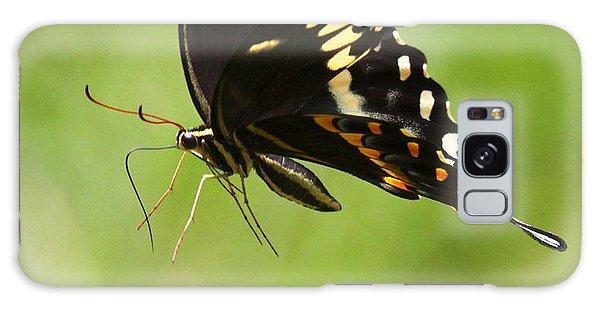 Butterfly Flight Galaxy Case by Myrna Bradshaw