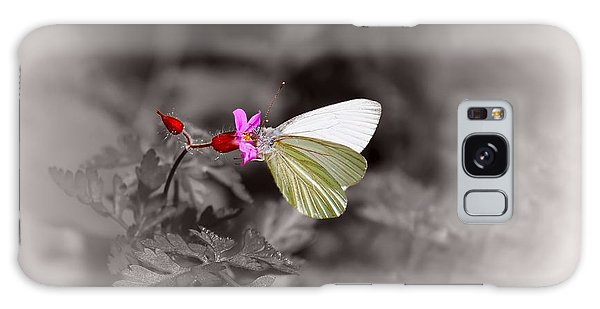 Butterfly On A Pink Flower Galaxy Case by Tracie Kaska