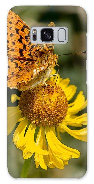 Butterfly On Daisy Galaxy Case