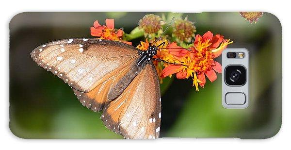 Butterfly On Mexican Flame Galaxy Case by Debra Martz