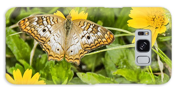 Butterfly On Yellow Flower Galaxy Case by Don Durfee
