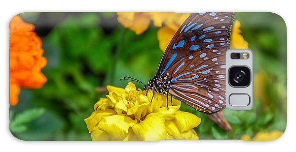 Butterfly On Yellow Marigold Galaxy Case