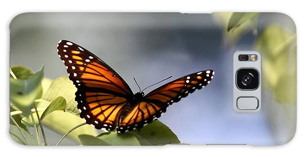 Butterfly -  Soaking Up The Sun Galaxy Case