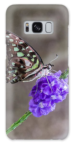Butterfly - Tailed Jay I Galaxy Case