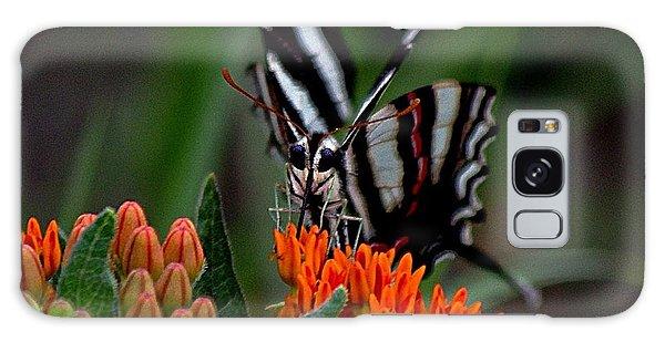 Butterfly Weed Galaxy Case by Karen McKenzie McAdoo
