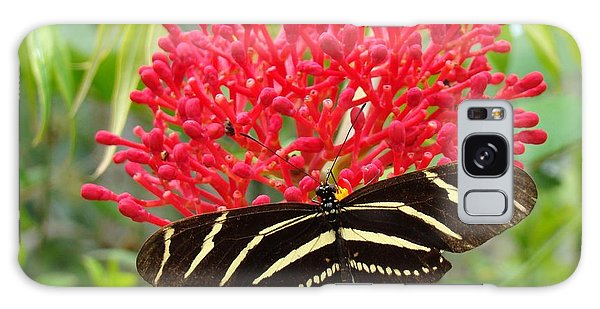Butterfly With Its Host Galaxy Case