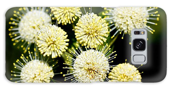 Buttonbush Galaxy Case