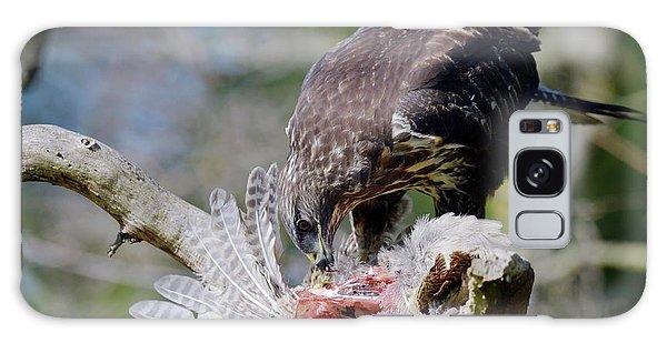 Buzzard Preying On A Bird Carcass Galaxy Case
