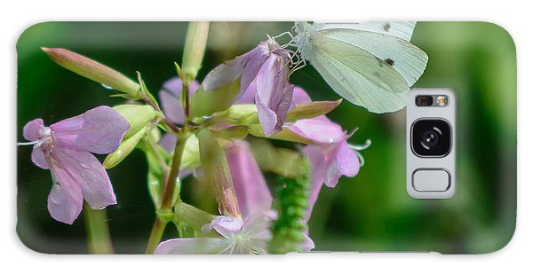 Cabbage White Butterfly Galaxy Case