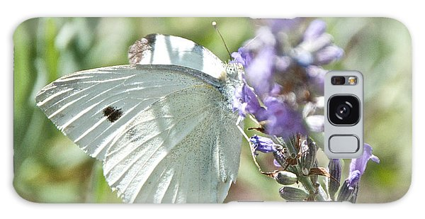 Cabbage White On Lavender  Galaxy Case