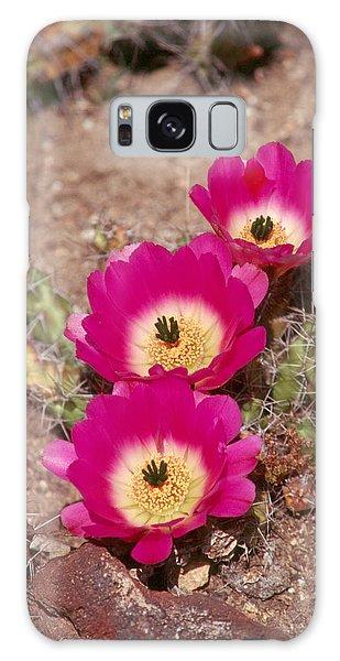 Cactus 1 Galaxy Case