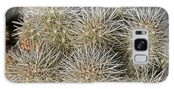 Cactus 14 Galaxy Case