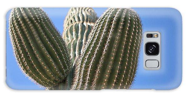Cactus 16 Galaxy Case
